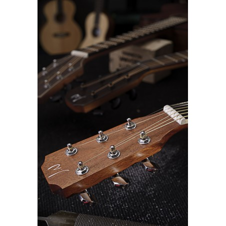 Acoustic-electric guitar James Neligan ASY-DCE