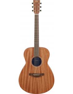 Elektroakustinė gitara...