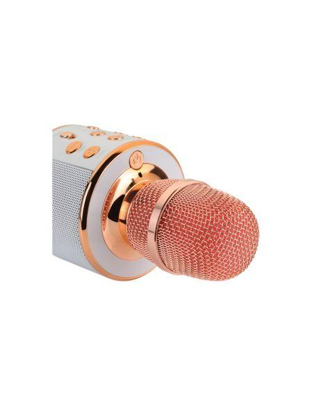 Karaoke vakarėlio mikrofonas, kolonėlė ir grotuvas viename QTX KPM5-RG