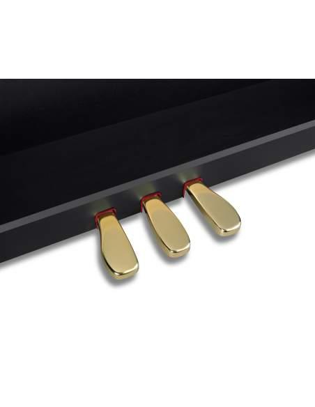 Skaitmeninis pianinas GP-310 Celviano Grand Hybrid Series Casio (Matinis juodas)