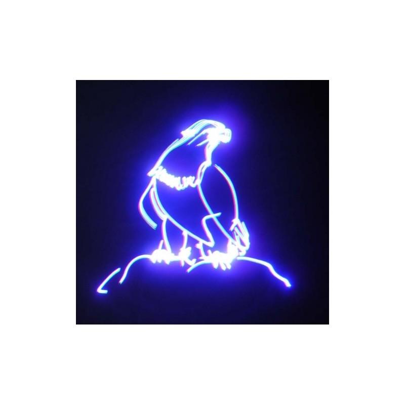 Lazeris RGB 300mW (SD kortele)