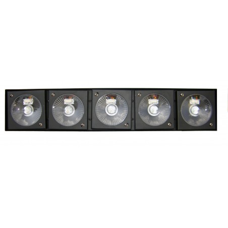 LED Blinderis 5x10W RGBW 4in1 DMX