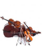 Stringed Orchestra Instruments