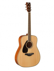 Lefthanded Acoustic Guitars